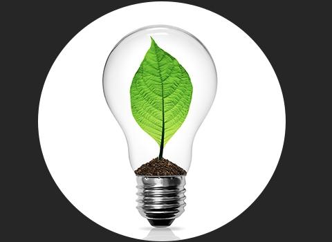 Energy / Environment