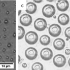 Polymeric Microcapsules